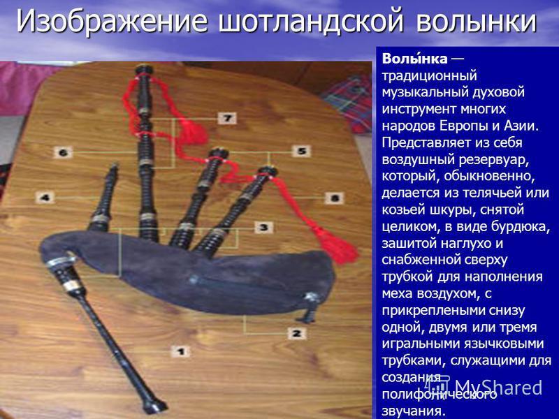 Изображение шотландской волынки Изображение шотландской волынки Волы́нка традиционный музыкальный духовой инструмент многих народов Европы и Азии. Представляет из себя воздушный резервуар, который, обыкновенно, делается из телячьей или козьей шкуры,