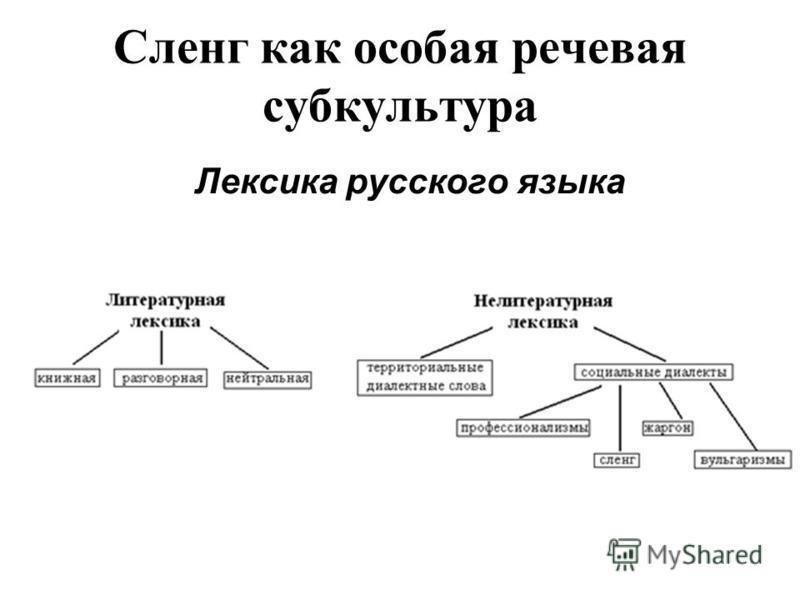 Сленг как особая речевая субкультура Лексика русского языка