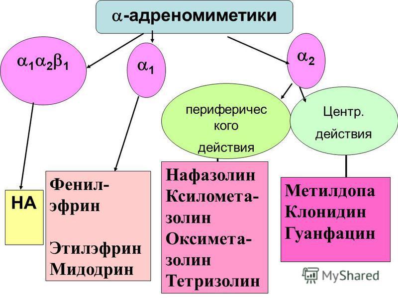 -адреномиметики 1 2 1 1 периферического действия Центр. действия 2 НА Фенил- эфрон Этилэфрон Мидодрин Нафазолин Ксиломета- золин Оксимета- золин Тетризолин Метилдопа Клонидин Гуанфацин