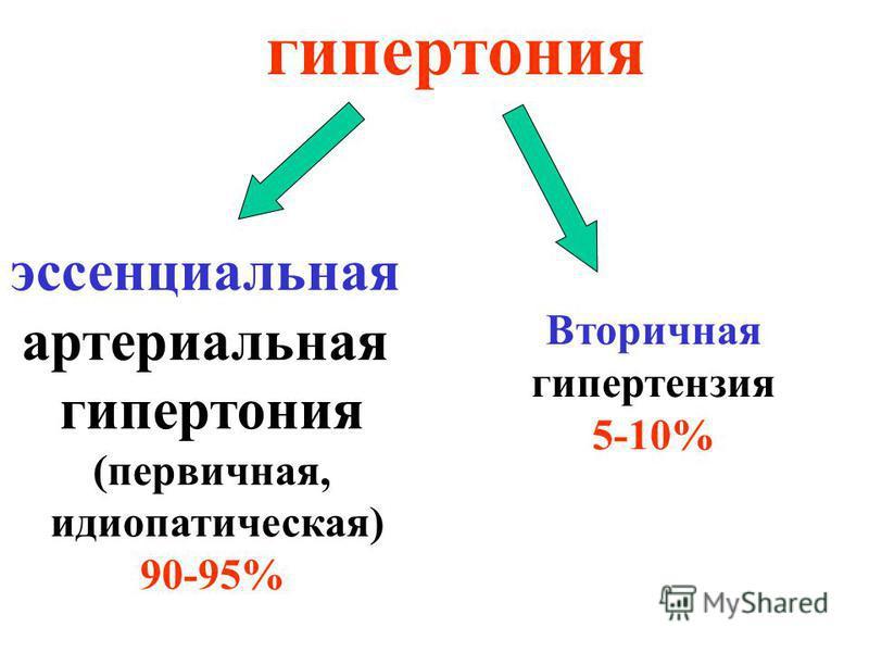 гипертония эссенциальная картериальная гипертония (первичная, идиопатическая) 90-95% Вторичная гипертензия 5-10%