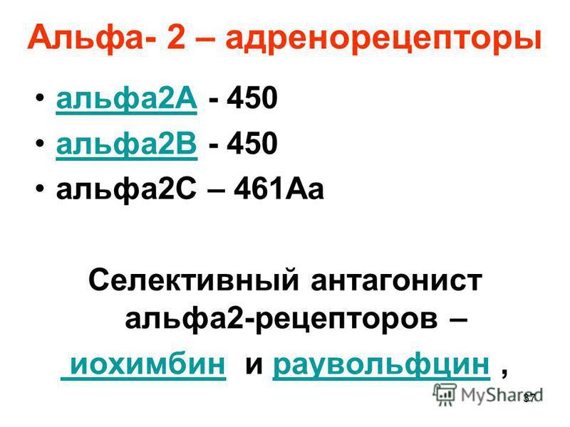 Альфа- 2 – адренорецепторы альфа 2А - 450 альфа 2А альфа 2В - 450 альфа 2В альфа 2С – 461Aa Селективный антагонист альфа 2-рецепторов – иохимбин иохимбин и раувольфцин,раувольфцин 37