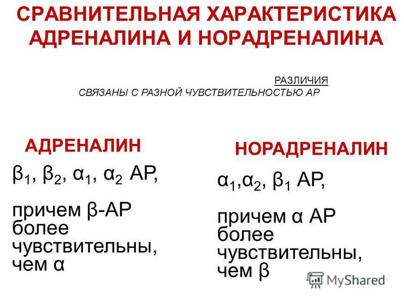 РАЗЛИЧИЯ СВЯЗАНЫ С РАЗНОЙ ЧУВСТВИТЕЛЬНОСТЬЮ АР АДРЕНАЛИН НОРАДРЕНАЛИН β 1, β 2, α 1, α 2 АР, причем β-АР более чувствительны, чем α α 1,α 2, β 1 АР, причем α АР более чувствительны, чем β СРАВНИТЕЛЬНАЯ ХАРАКТЕРИСТИКА АДРЕНАЛИНА И НОРАДРЕНАЛИНА