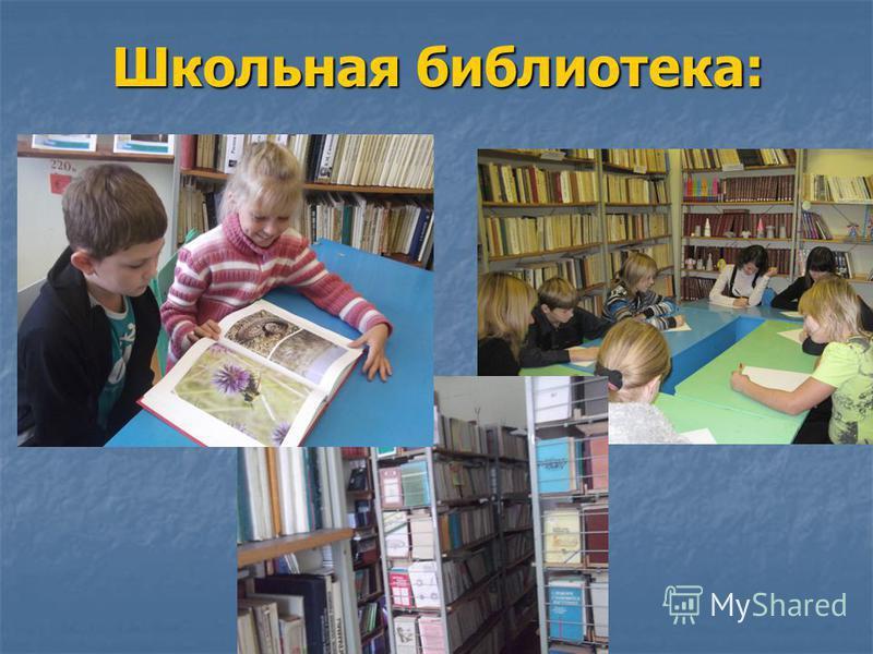 Школьная библиотека: