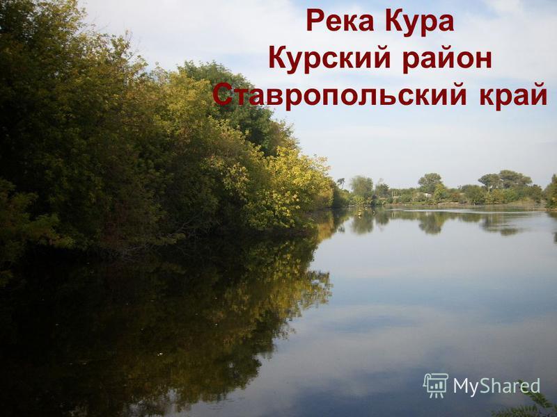 Река Кура Курский район Ставропольский край