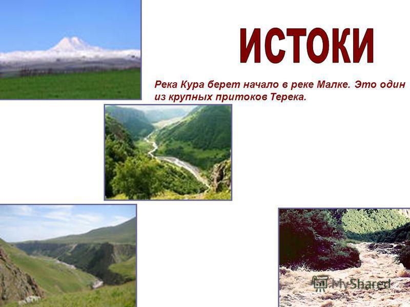 . Река Кура берет начало в реке Малке. Это один из крупных притоков Терека.