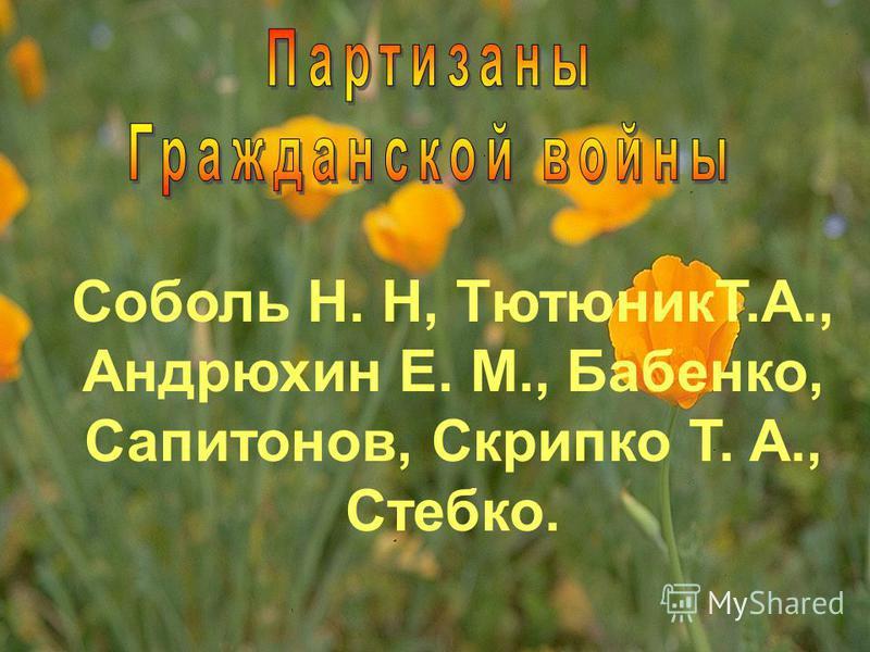 Соболь Н. Н, ТютюникТ.А., Андрюхин Е. М., Бабенко, Сапитонов, Скрипко Т. А., Стебко.
