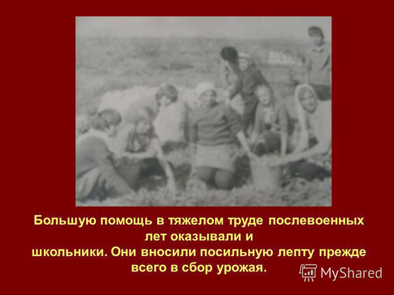Большую помощь в тяжелом труде послевоенных лет оказывали и школьники. Они вносили посильную лепту прежде всего в сбор урожая.