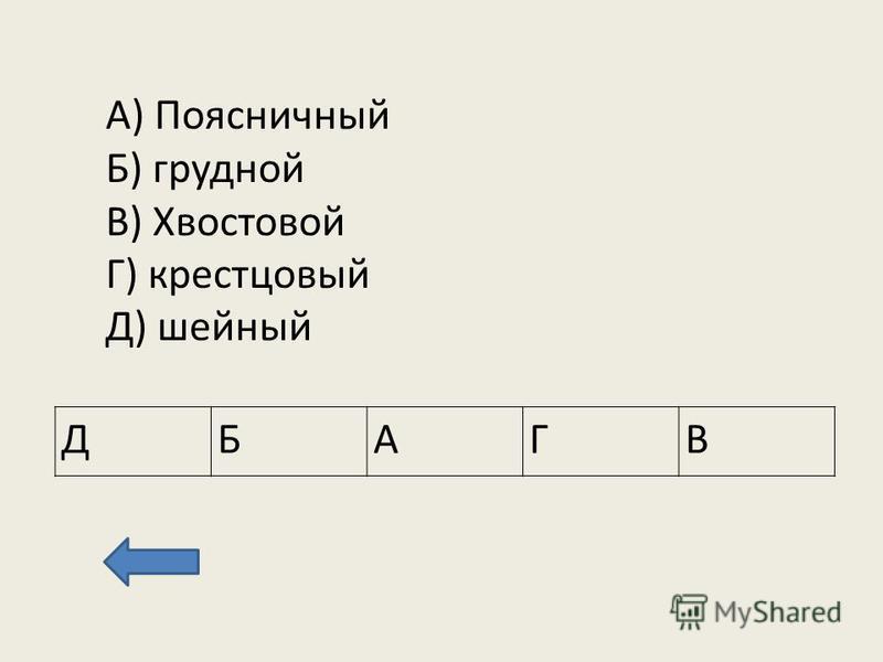 А) Поясничный Б) грудной В) Хвостовой Г) крестцовый Д) шейный ДБАГВ