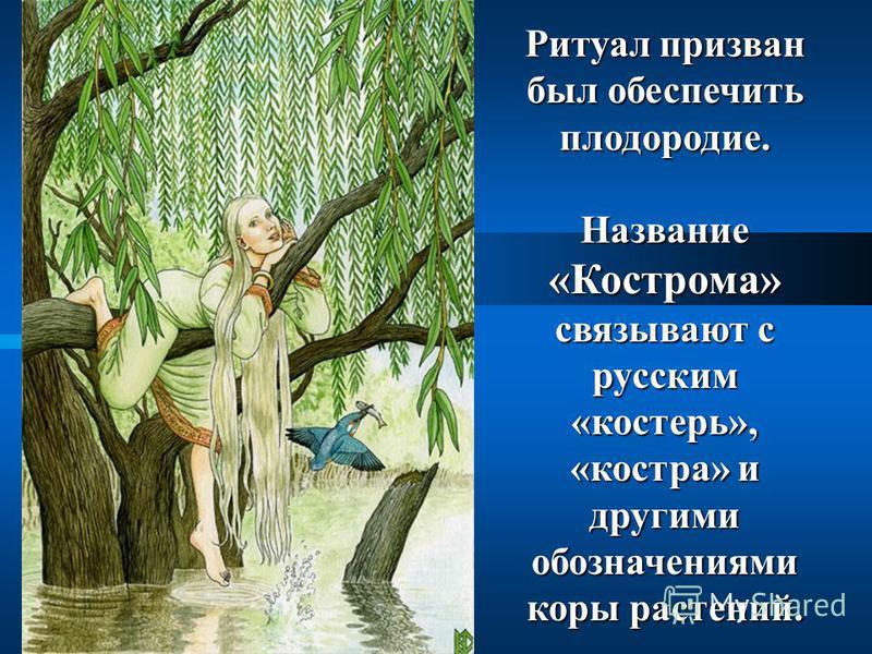 Ритуал призван был обеспечить плодородие. Название «Кострома» связывают с русским «костерь», «костра» и другими обозначениями коры растений.