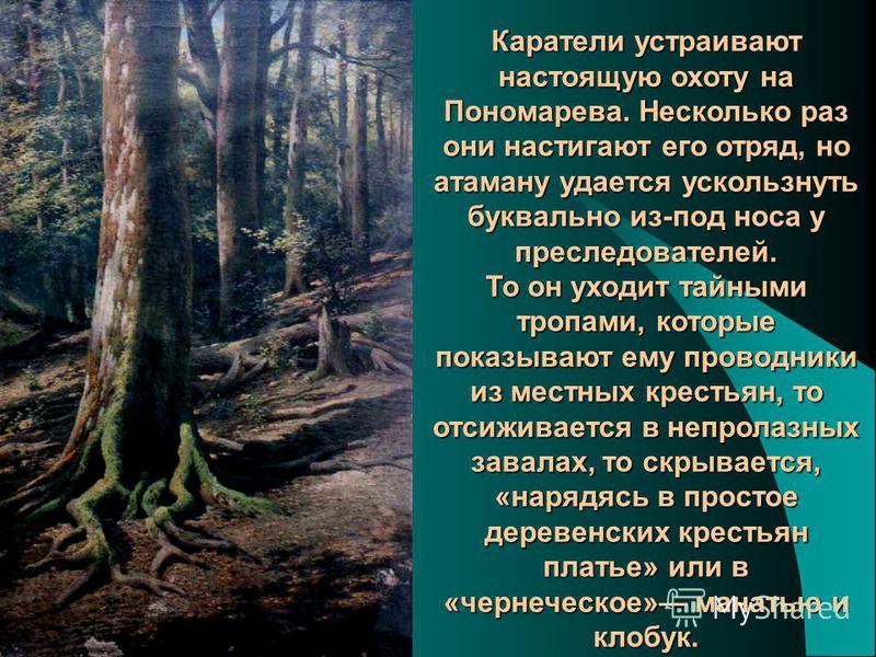 Каратели устраивают настоящую охоту на Пономарева. Несколько раз они настигают его отряд, но атаману удается ускользнуть буквально из-под носа у преследователей. То он уходит тайными тропами, которые показывают ему проводники из местных крестьян, то