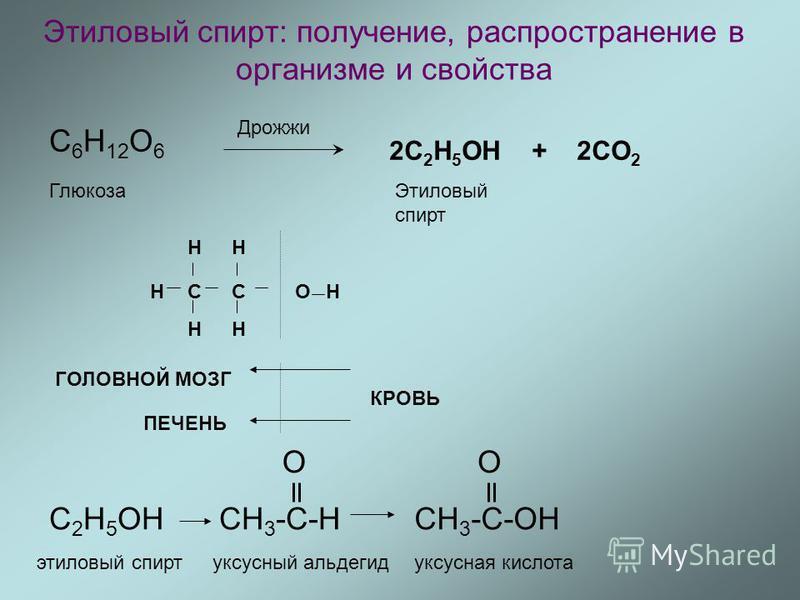 Этиловый спирт: получение, распространение в организме и свойства C 6 H 12 O 6 Дрожжи 2С 2 H 5 OH + 2CO 2 Этиловый спирт Глюкоза CC H H H H H OH ГОЛОВНОЙ МОЗГ ПЕЧЕНЬ КРОВЬ С 2 H 5 OHCH 3 -C-H O CH 3 -C-OH O этиловый спирт уксусный альдегидуксусная ки