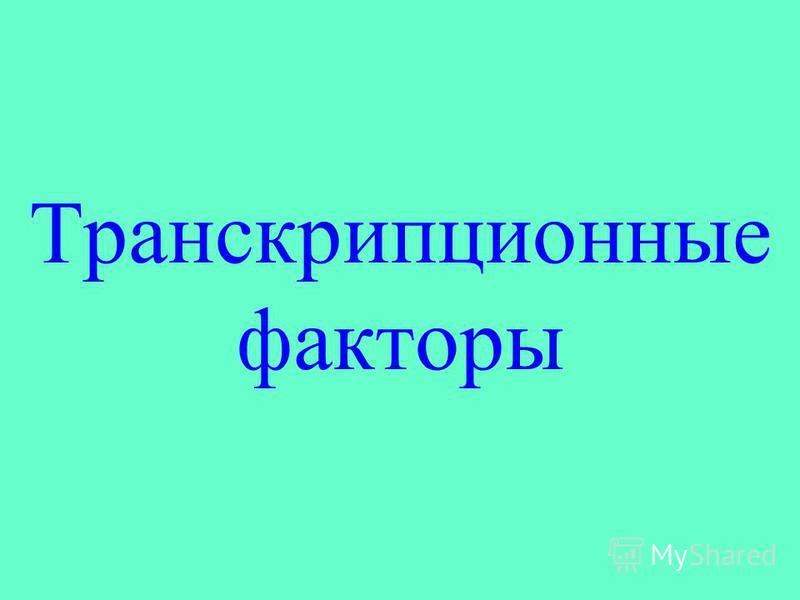 Транскрипционные факторы