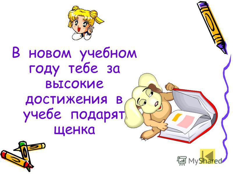 В новом учебном году тебе за высокие достижения в учебе подарят щенка