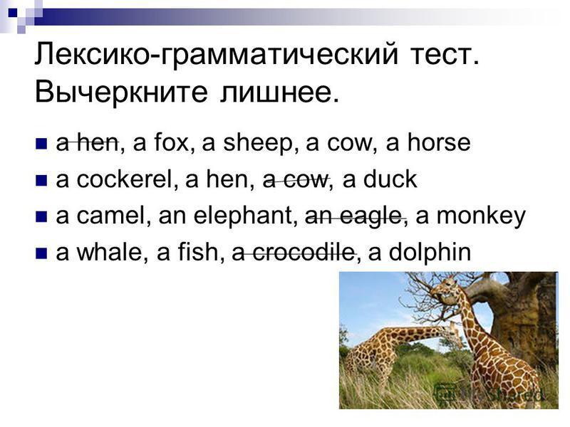 Лексико-грамматический тест. Вычеркните лишнее. a hen, a fox, a sheep, a cow, a horse a cockerel, a hen, a cow, a duck a camel, an elephant, an eagle, a monkey a whale, a fish, a crocodile, a dolphin