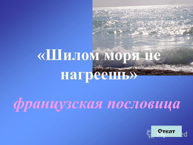 «Шилом моря не нагреешь» французская пословица Откат
