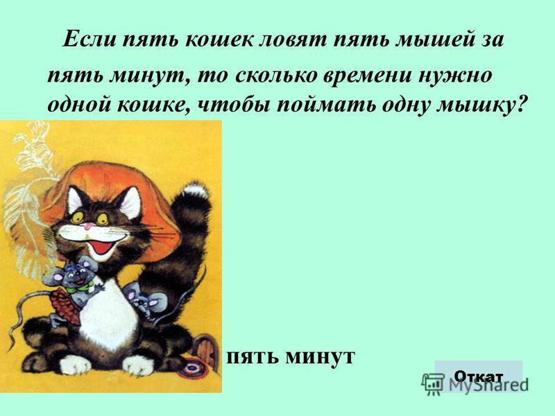 Если пять кошек ловят пять мышей за пять минут, то сколько времени нужно одной кошке, чтобы поймать одну мышку? пять минут Откат