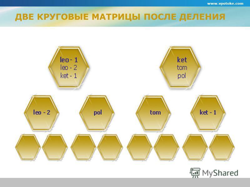 www.vpotoke.com ДВЕ КРУГОВЫЕ МАТРИЦЫ ПОСЛЕ ДЕЛЕНИЯ