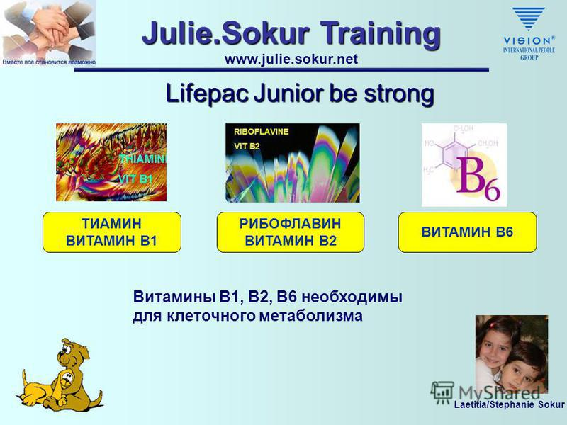 Laetitia/Stephanie Sokur Julie.Sokur Training www.julie.sokur.net Lifepac Junior be strong Активные Ингредиенты Be strong Вит B1 Вит B2 Вит B6Вит DВит C (Ацерола) МЁД МАТОЧНОЕ МОЛОЧКО