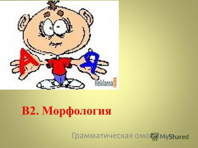 В2. Морфология Грамматическая омонимия