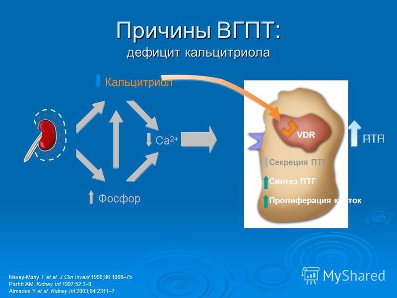 Причины ВГПТ : дефицит кальцитриола Navey-Many T et al. J Clin Invest 1990;86:1968–75 Parfitt AM. Kidney Int 1997;52:3–9 Almaden Y et al. Kidney Int 2003;64:2311–7 VDR CaR Кальцитриол Фосфор Ca 2+ Секреция ПТГ синтез ПТГ Пролиферация клеток PTHПТГ Си