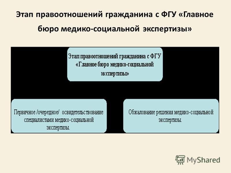 Этап правоотношений гражданина с ФГУ «Главное бюро медико-социальной экспертизы»