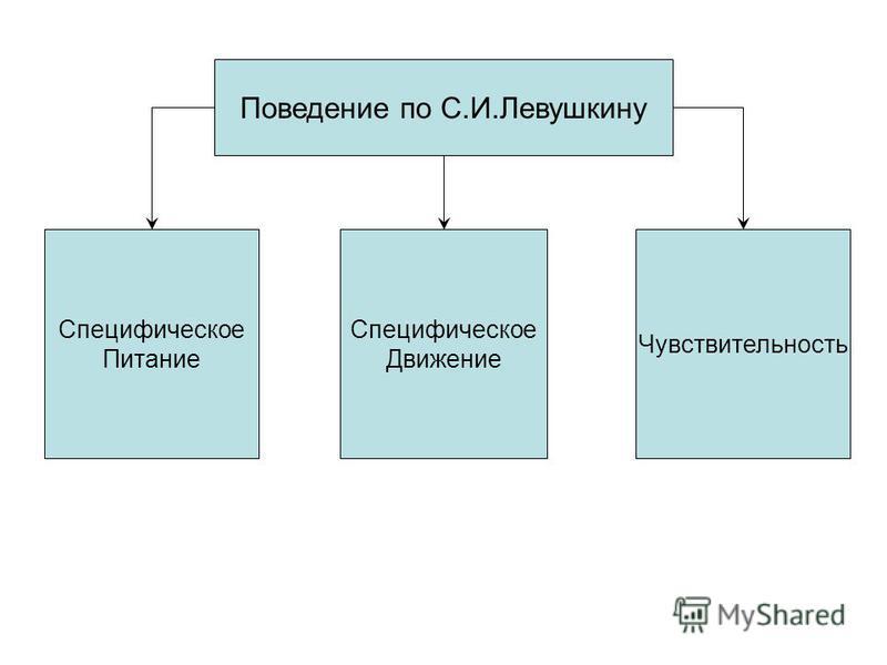 Поведение по С.И.Левушкину Специфическое Движение Специфическое Питание Чувствительность