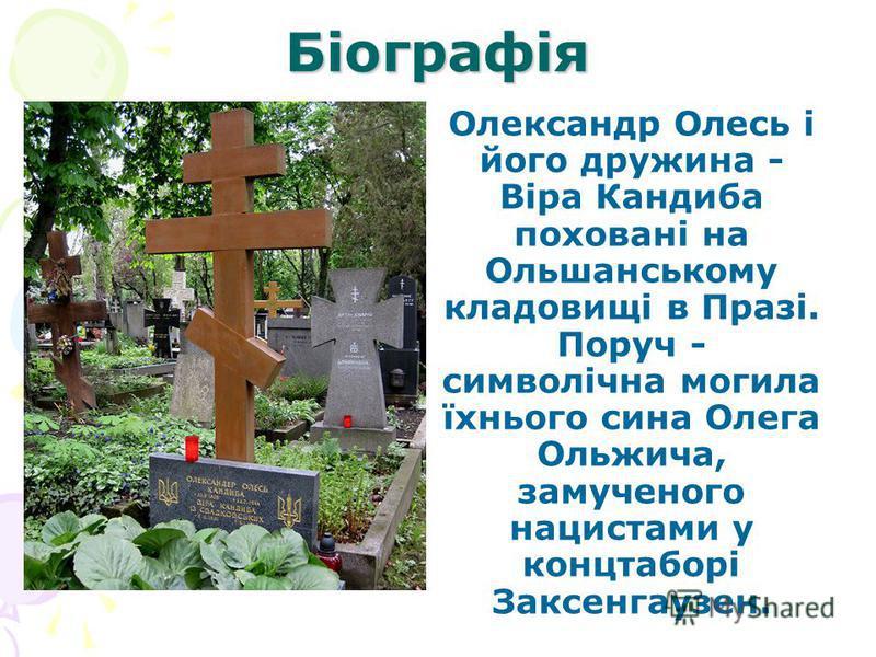 Біографія Олександр Олесь і його дружина - Віра Кандиба поховані на Ольшанському кладовищі в Празі. Поруч - символічна могила їхнього сина Олега Ольжича, замученого нацистами у концтаборі Заксенгаузен.
