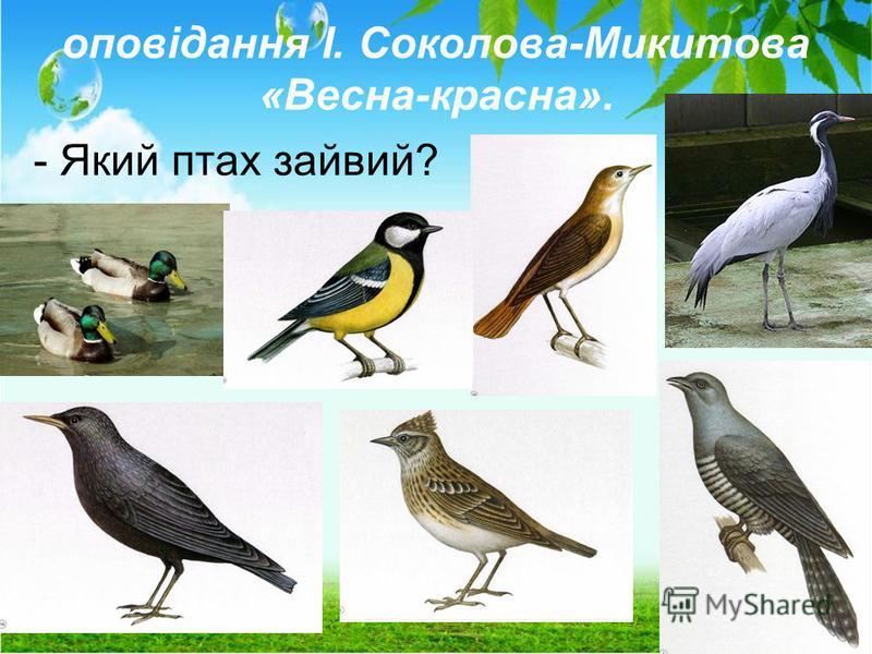оповідання І. Соколова-Микитова «Весна-красна». - Який птах зайвий?
