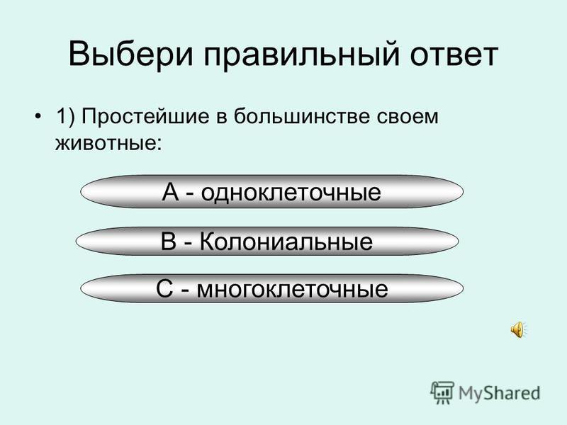 А - одноклеточные Выбери правильный ответ 1) Простейшие в большинстве своем животные: В - Колониальные С - многоклеточные