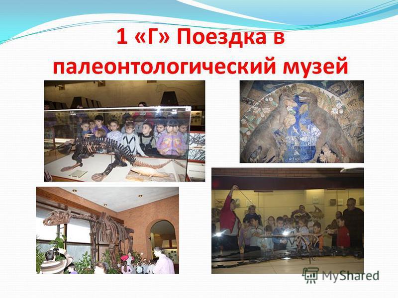1 «Г» Поездка в палеонтологический музей