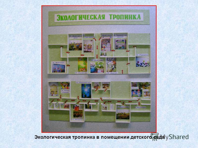 Экологическая тропинка в помещении детского сада