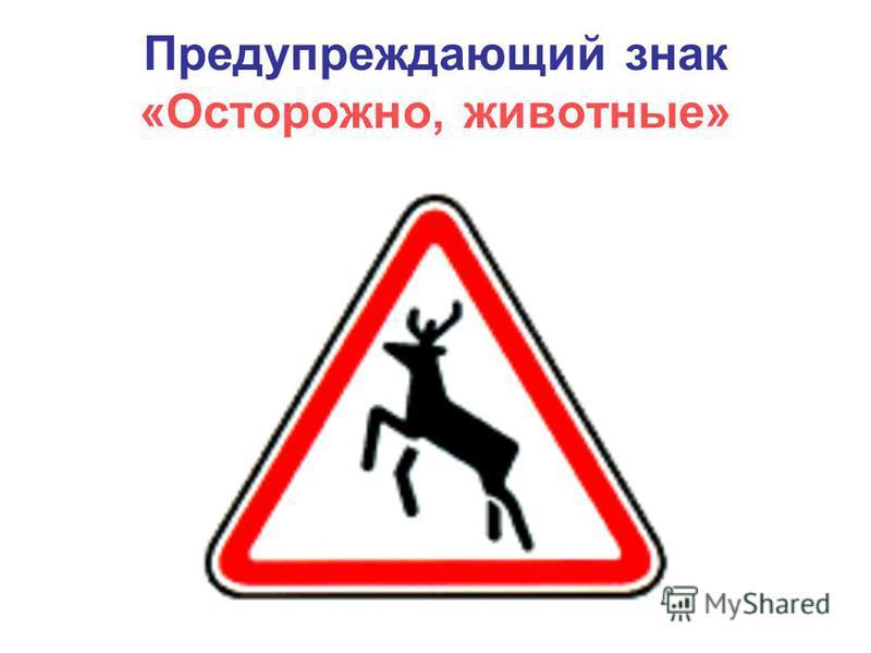 Предупреждающий знак «Осторожно, животные»