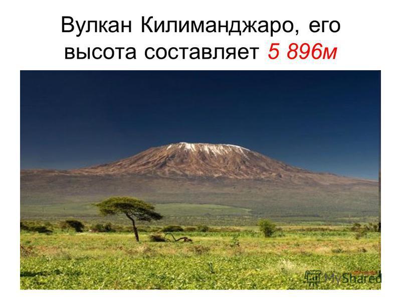 Вулкан Килиманджаро, его высота составляет 5 896 м