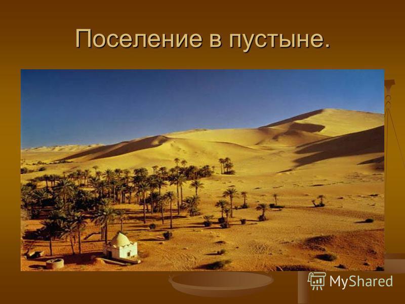 Поселение в пустыне.