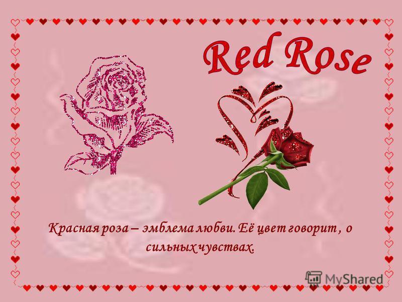 Красная роза – эмблема любви. Её цвет говорит, о сильных чувствах.