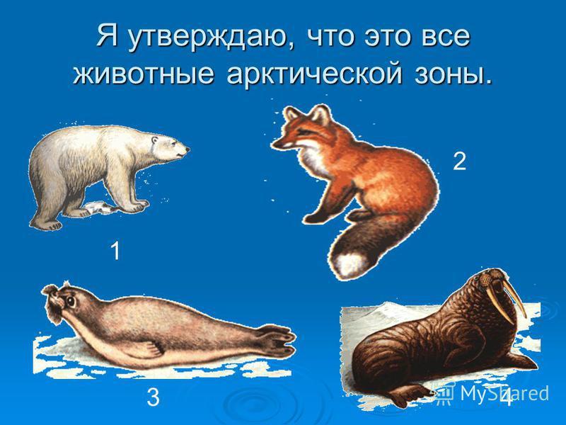 Я утверждаю, что это все животные арктической зоны. 1 2 34