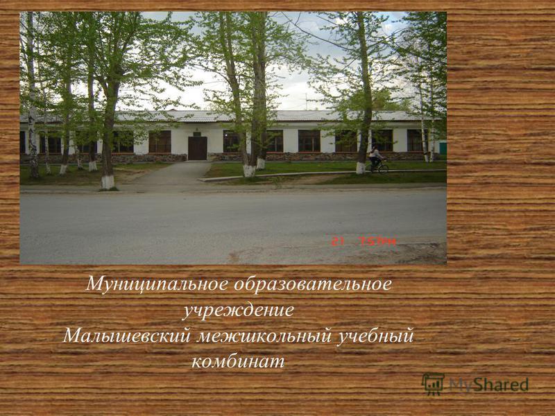 Муниципальное образовательное учреждение Малышевский межшкольный учебный комбинат