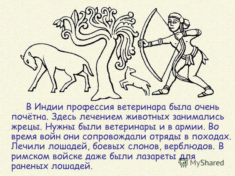 В Индии профессия ветеринара была очень почётна. Здесь лечением животных занимались жрецы. Нужны были ветеринары и в армии. Во время войн они сопровождали отряды в походах. Лечили лошадей, боевых слонов, верблюдов. В римском войске даже были лазареты