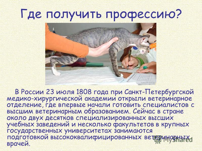 Где получить профессию? В России 23 июля 1808 года при Санкт-Петербургской медико-хирургической академии открыли ветеринарное отделение, где впервые начали готовить специалистов с высшим ветеринарным образованием. Сейчас в стране около двух десятков
