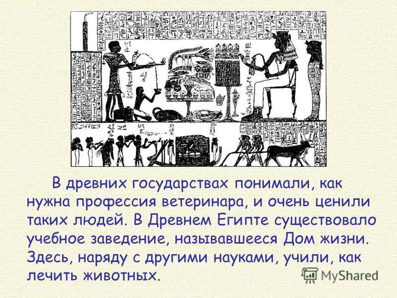 В древних государствах понимали, как нужна профессия ветеринара, и очень ценили таких людей. В Древнем Египте существовало учебное заведение, называвшееся Дом жизни. Здесь, наряду с другими науками, учили, как лечить животных.