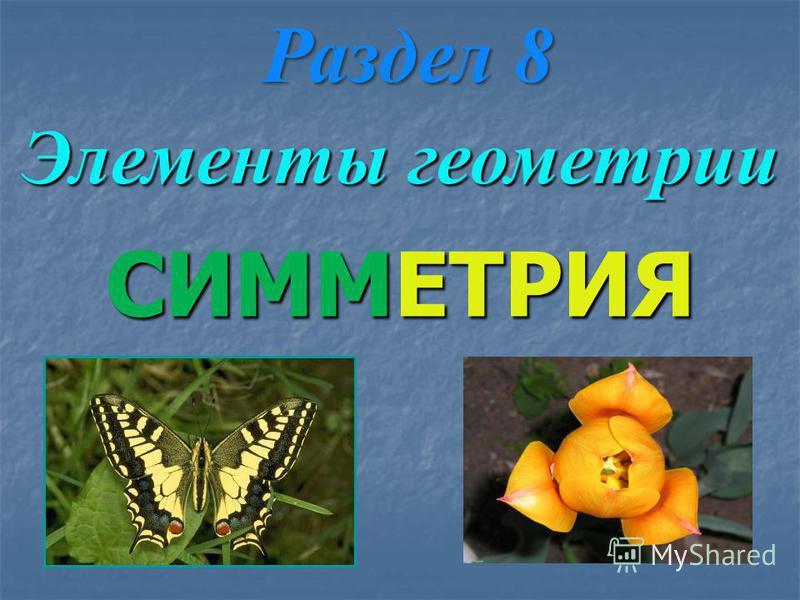 СИММЕТРИЯ Раздел 8 Элементы геометрии
