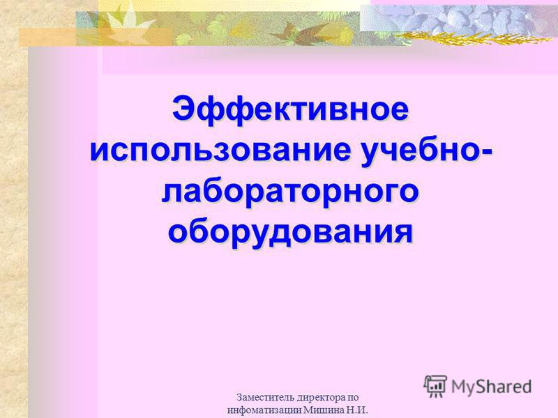 Заместитель директора по информатизации Мишина Н.И. Эффективное использование учебно- лабораторного оборудования
