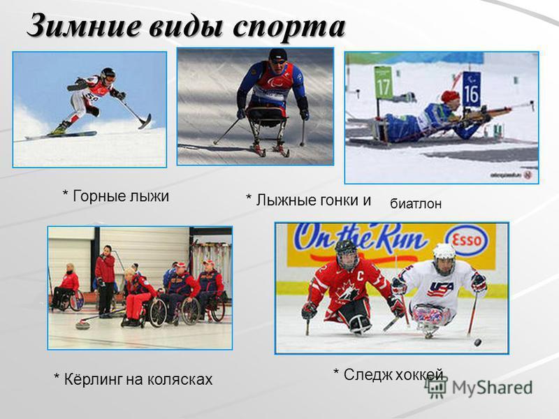 * Лыжные гонки и * Горные лыжи * Следж хоккей * Кёрлинг на колясках биатлон Зимние виды спорта