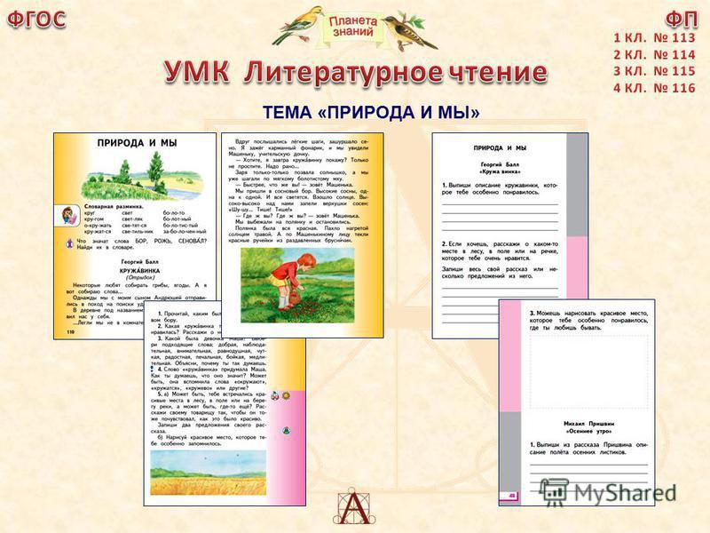 ТЕМА «ПРИРОДА И МЫ» С.110-111, 113; р.т.-с.47-48