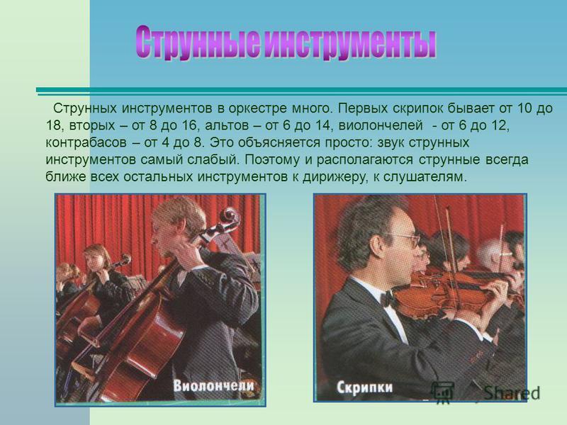 Струнных инструментов в оркестре много. Первых скрипок бывает от 10 до 18, вторых – от 8 до 16, альтов – от 6 до 14, виолончелей - от 6 до 12, контрабасов – от 4 до 8. Это объясняется просто: звук струнных инструментов самый слабый. Поэтому и распола
