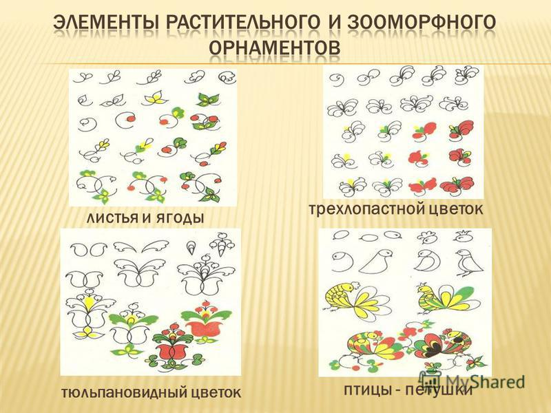 листья и ягоды трехлопастной цветок тюльпановидный цветок птицы - петушки