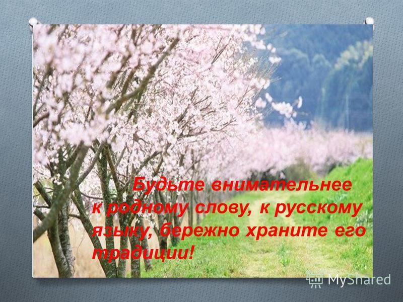 Будьте внимательнее к родному слову, к русскому языку, бережно храните его традиции!