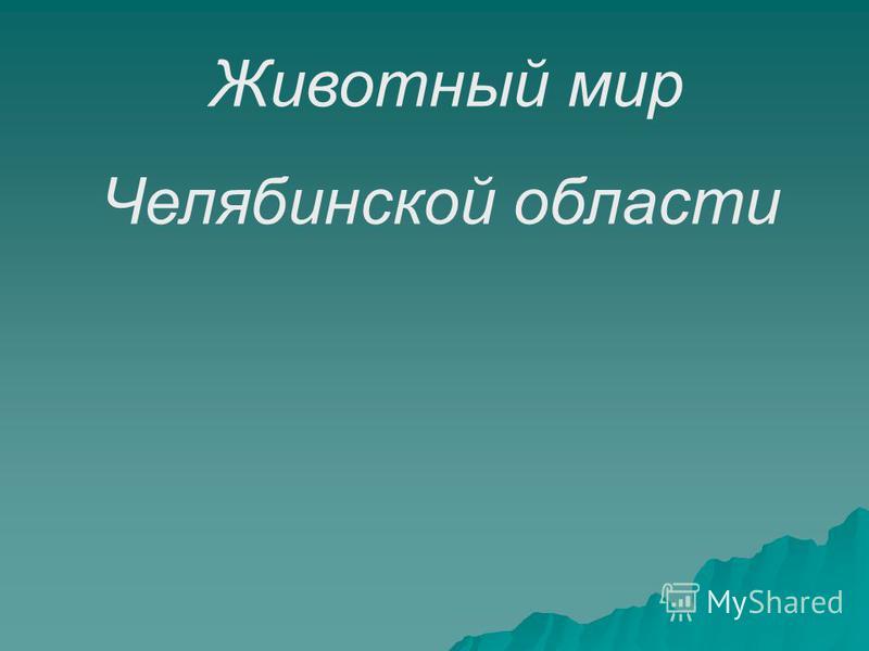 Животный мир Челябинской области