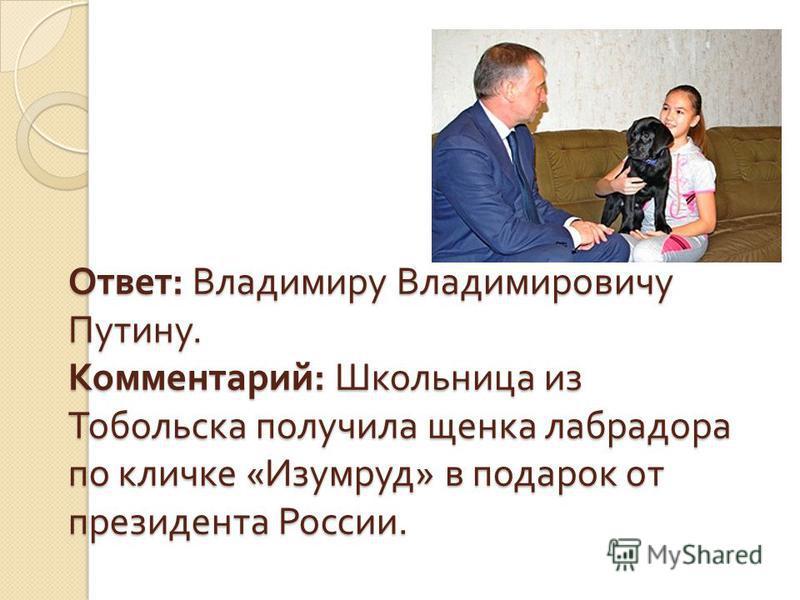 Ответ : Владимиру Владимировичу Путину. Комментарий : Школьница из Тобольска получила щенка лабрадора по кличке « Изумруд » в подарок от президента России.