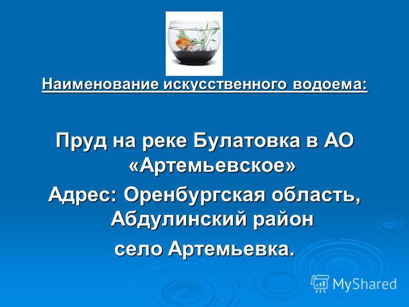Наименование искусственного водоема: Пруд на реке Булатовка в АО «Артемьевское» Адрес: Оренбургская область, Абдулинский район село Артемьевка.